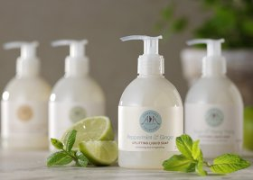 AA liquid soaps range_landscape_peppermint & ginger_pickle