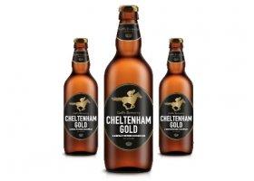 Blog_Goffs Cheltenham Gold 500x355